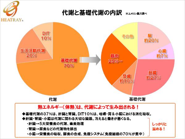 代謝円グラフ